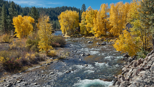 Truckee River 1501